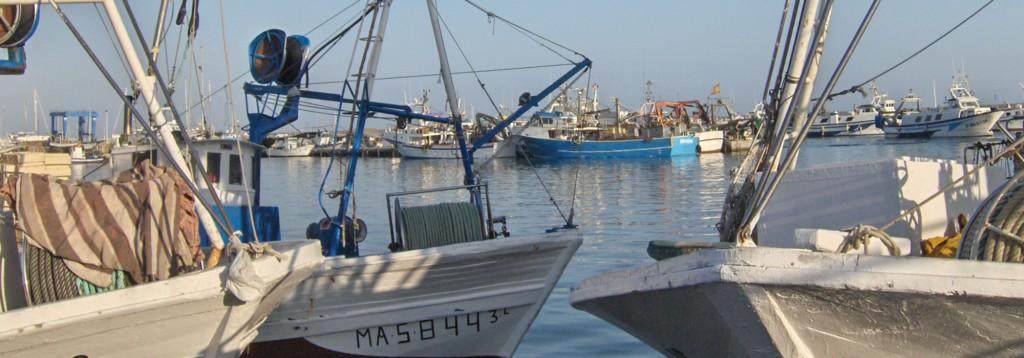 Villa Mariposa - Hafen Caleta de Velez